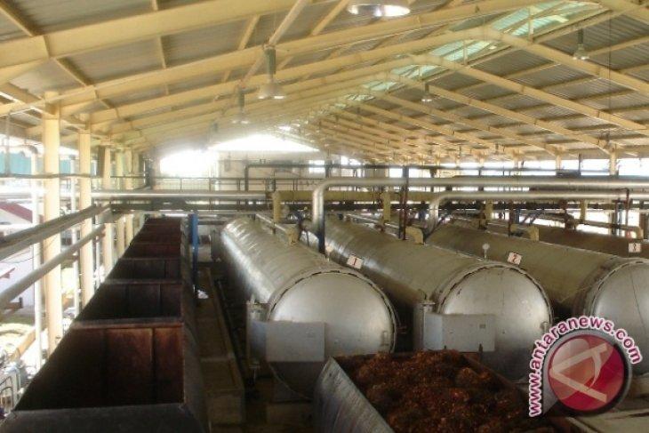 Kementan Harapkan Insentif Untuk Pabrik CPO
