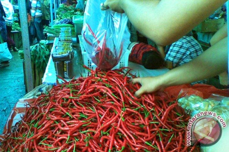 Jelang Ramadhan, harga cabai di Bengkulu Rp45 ribu per kilogram