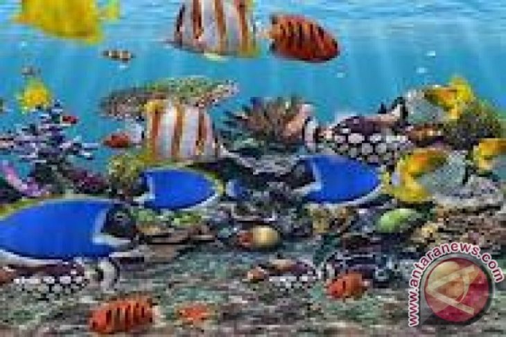 Aquarium fish exports worth more than four thousand dollars