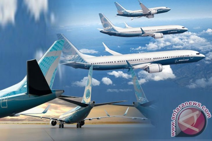 Operators told to check airworthiness of Boeing 737-8 Max aircraft