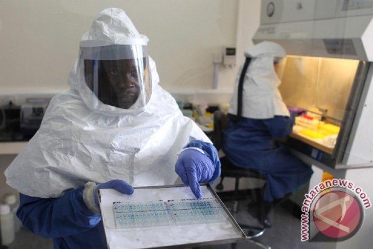 Ebola virus has killed 74 in Guinea