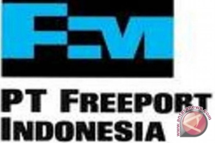 Pemerintah - Freeport Sepakati Bangun
