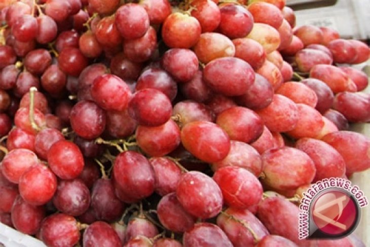 Anggur Merah Non-Alkohol Bisa Menyehatkan Jantung