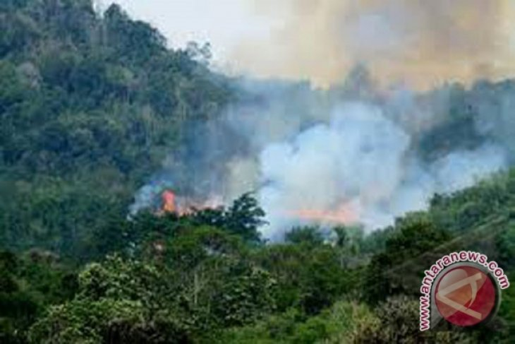 78 titik panas terdeteksi di Riau