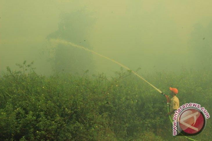 Titik panas kebakaran lahan di Indonesia meningkat