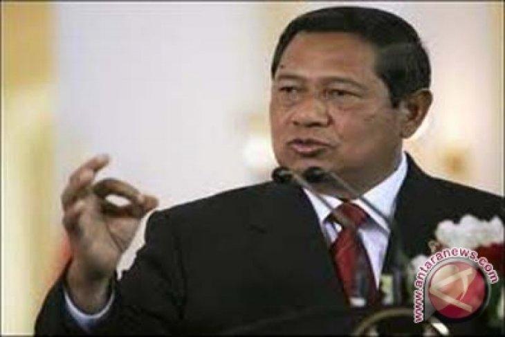 Presiden: Usut pembunuh gajah Aceh