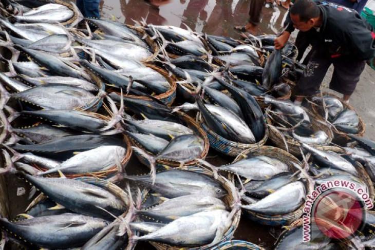 Bali`s tuna fish exports up last year