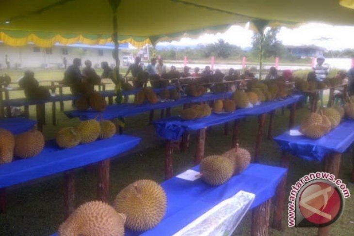 Kontes Durian Unggul Kalbar Diikuti 86 Peserta