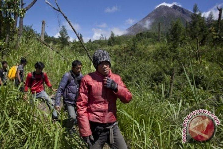 SAR berhasil evakuasi dua pendaki Merapi tersesat