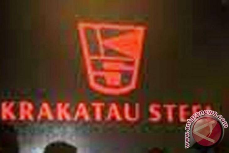 Krakatau Steel applies restructuring program to save steel business