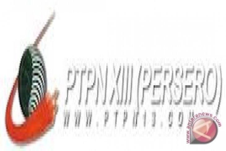 PTPN XIII siapkan langkah strategis