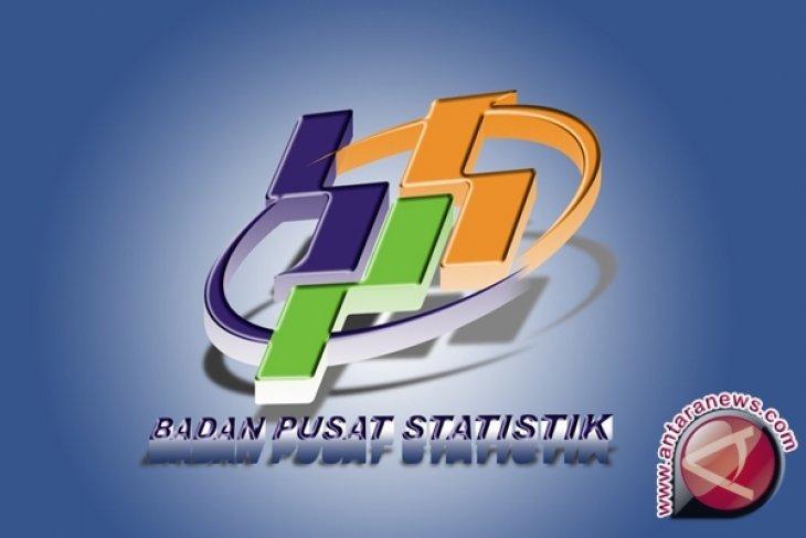 BPS Bangka Selatan Olah Data Pelaku Ekonomi
