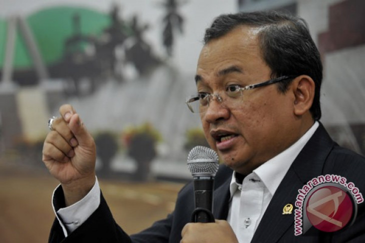 Deputy House Speaker concerned about Anas` detention