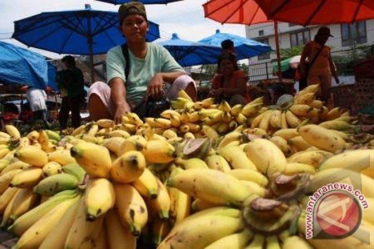 Rajin makan pisang, kurangi keripik cegah stroke