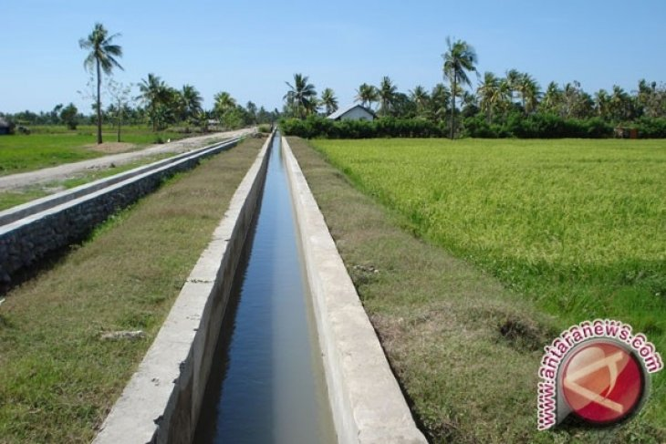 Petani Desa Peradong Membutuhkan Irigasi Sawah
