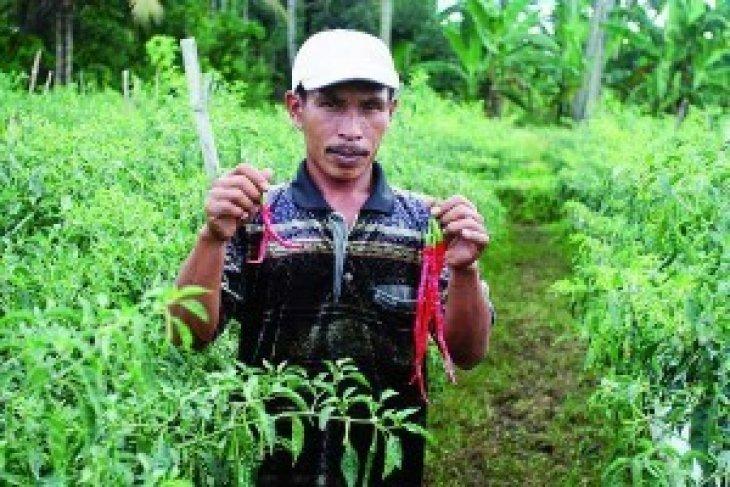 Bupati: Pengadaan Barang Dan Jasa Harus Transparan