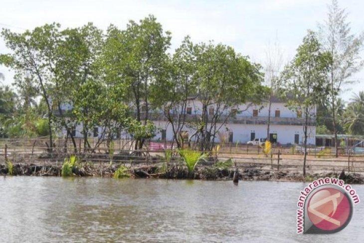 Komunitas mangrove rehabilitasi ekosistem mangrove Pantai Panjang