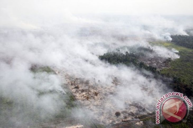 Number of Sumatra's fire hot spots increases to 227