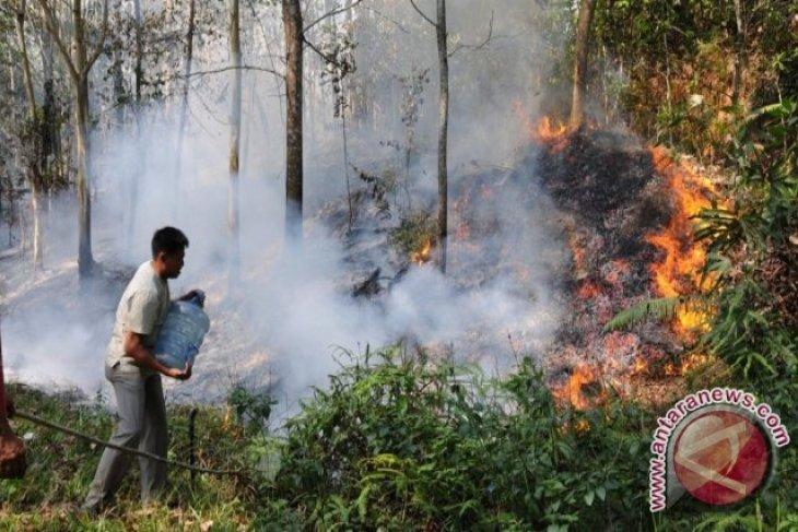 Masyarakat Penajam Diingatkan Jangan Membakar Lahan