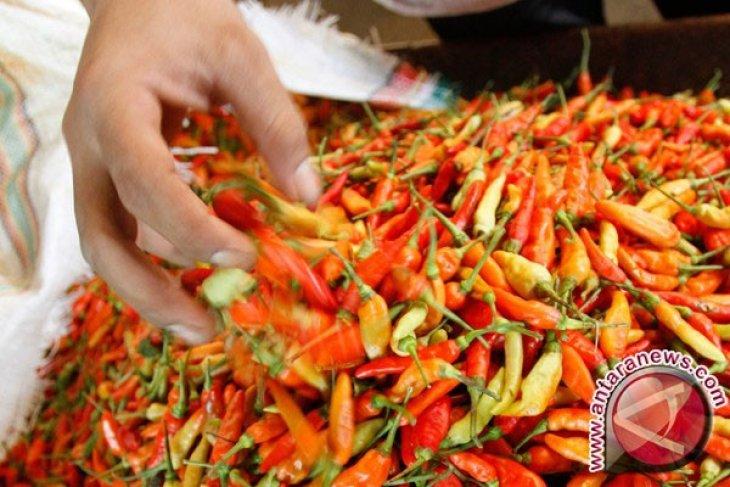 Harga Cabai Rawit Merah Naik Drastis Antara News Megapolitan