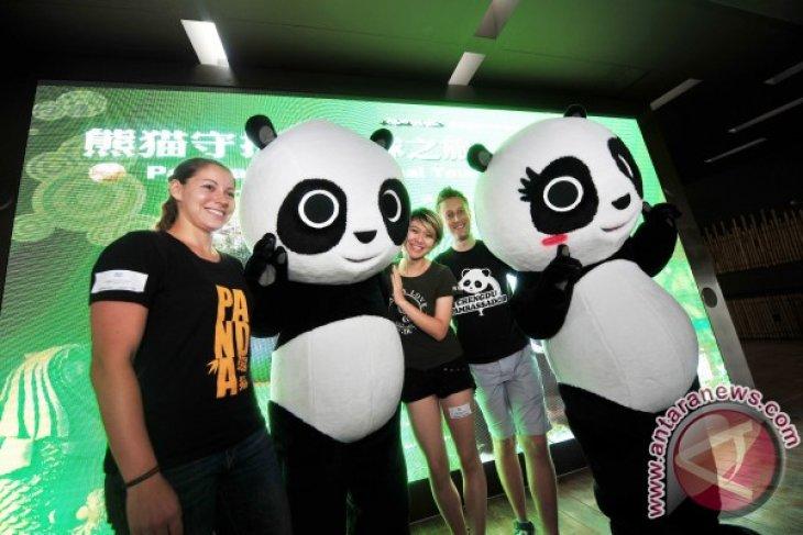 Panda Ambassadors Visit Singapore's River Safari on Global Conservation Tour
