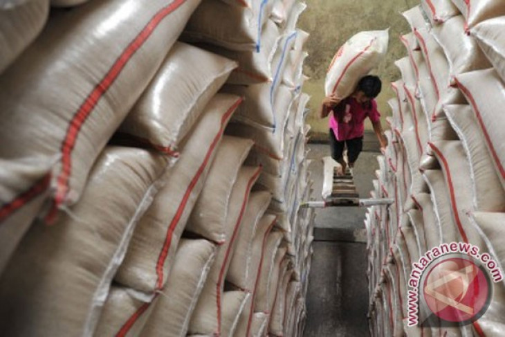 Logistic agency distributes 53 thousand tons of rice through market operations