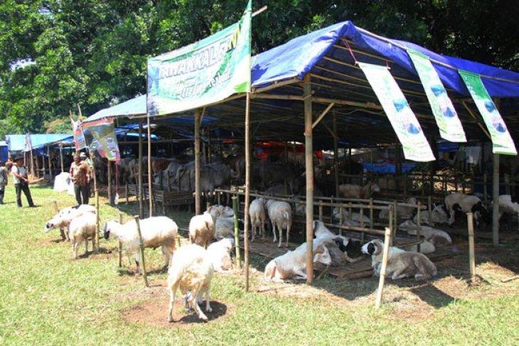 Kota Bogor gelar pasar ternak