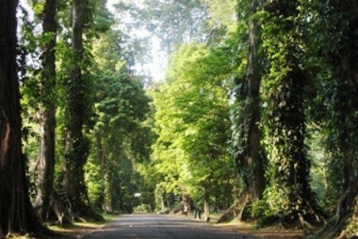 Karawang Siapkan 1.000 Hektare Untuk Hutan Raya
