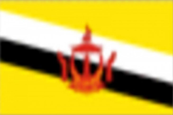 Brunei donates 5.5 billion rupiah for C Sulawesi's quake and tsunami victims