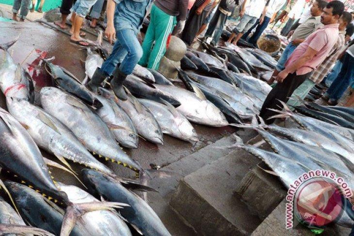 Perikanan tangkap Sukabumi sumbang produksi selatan Jabar
