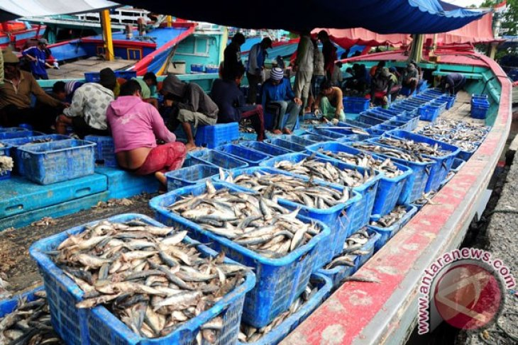 Maritime sector potential to turn out Rp3,000 trillion in income