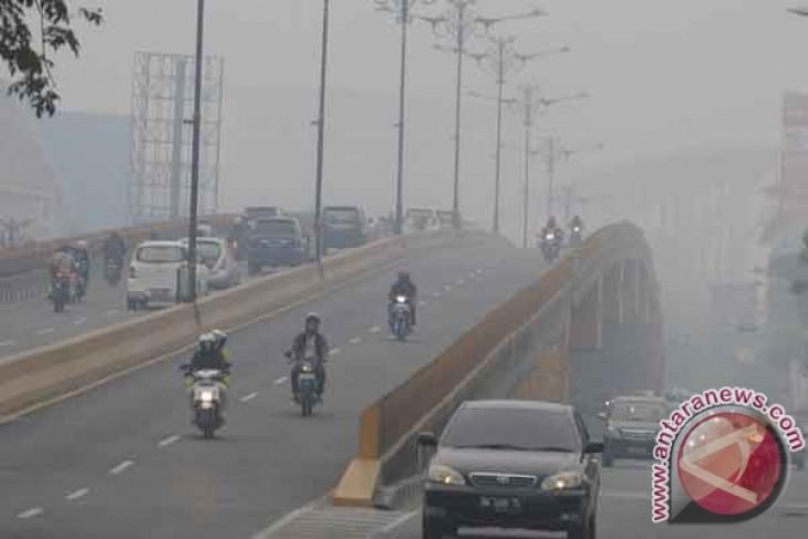 Haze reduces visibility in Pekanbaru to 50 to 70 meters