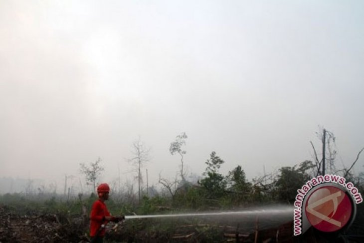 Satellite detects 81 hotspots in Riau