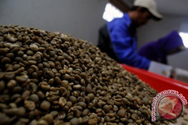 Simalungun district grows arabica coffee