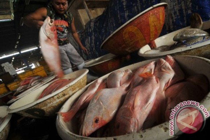 Indonesia promotes ecolabelling of fish products in developing countries