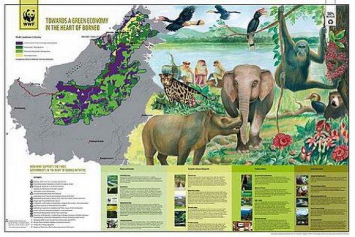 WWF dan Formadat Dorong Pembangunan Berkelanjutan Jantung Borneo