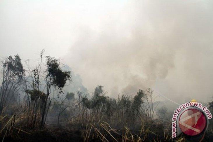 Mantan Pejabat Kubu Raya Diduga Membiarkan Lahan Terbakar
