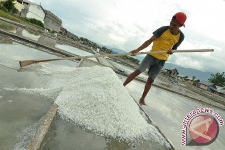 Produksi Garam Karawang Masih Rendah