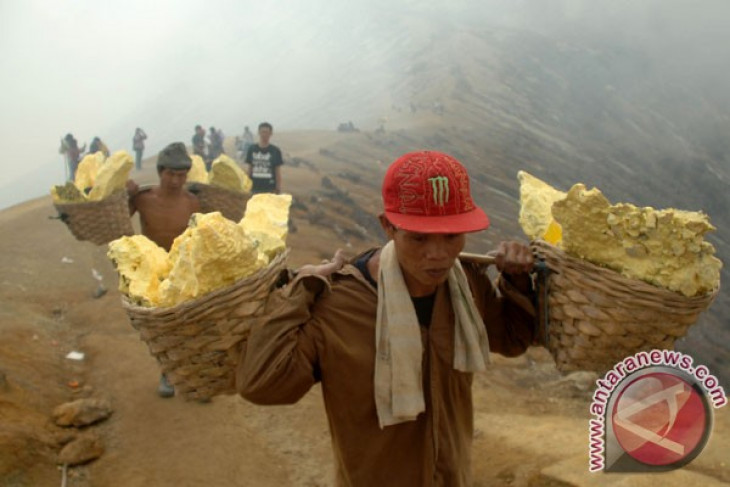 Indonesian student discovers ethanol-producing bacteria in Mount Ijen