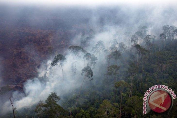 Six hotspots detected on Sumatra Island