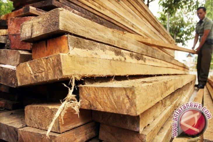 Dandim Putussibau dukung proses hukum oknum aparat terkait ilegal logging