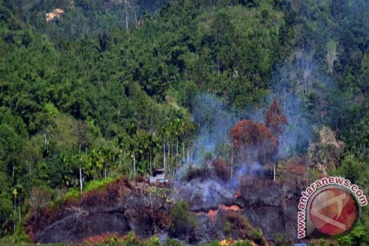 Satellite detects 187 hotspots in C. Kalimantan