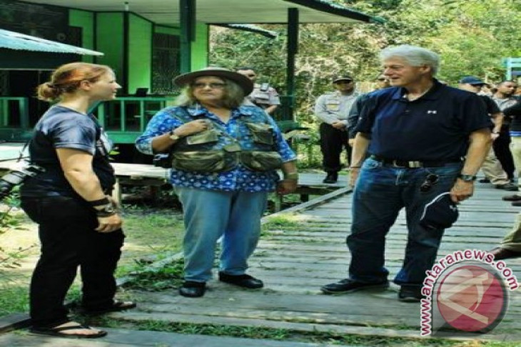 Bill Clinton Visits The Work Area of PT. Rimba Raya Conservation and Camp Leakey in Tanjung Puting