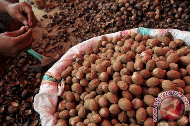 N. Sulawesi exports nutmeg to Italy