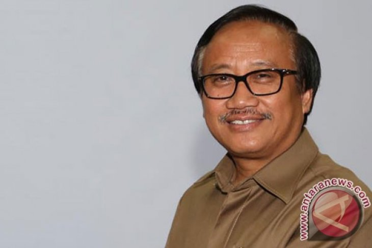 Merauke to contribute to country`s production of unhulled rice