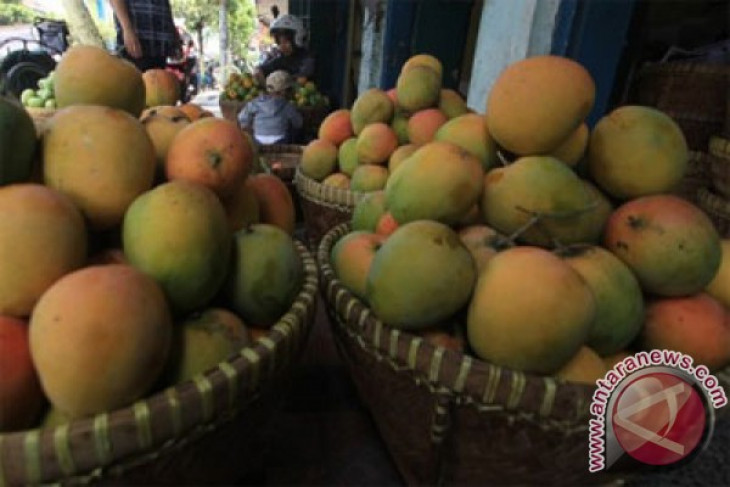 BATAN conducts exported fruits' irradiation for shelf life extension