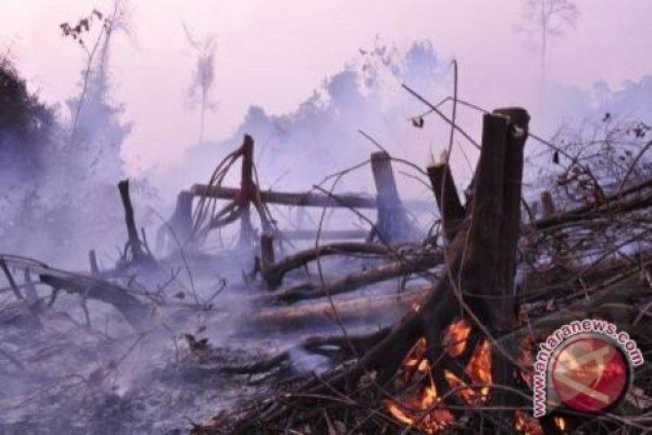 Udara Riau Berbahaya