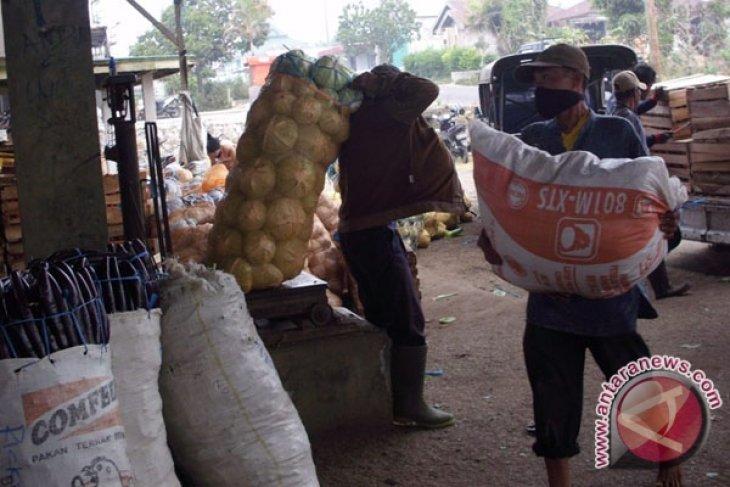Harga aneka sayuran di Rejanglebong anjlok