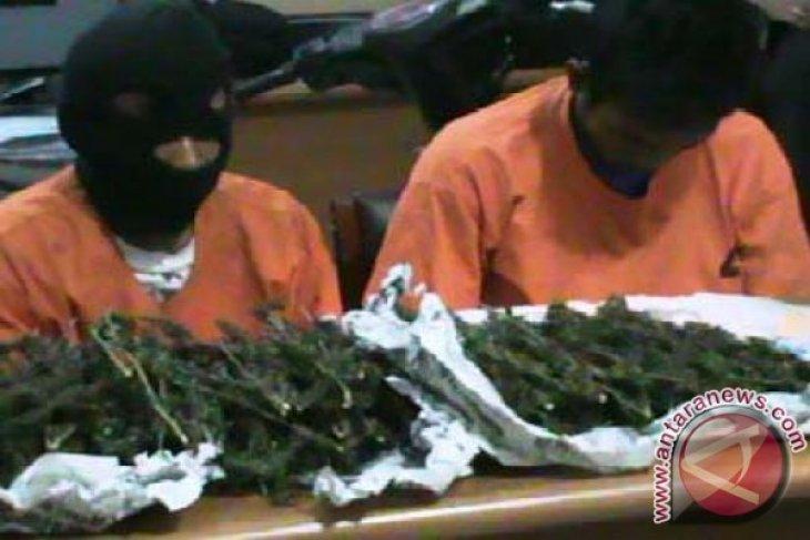 Polisi ringkus tiga tersangka pengguna narkoba