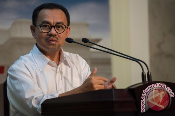 Indonesian minister optimistic to reach power development target of 35,000 MW